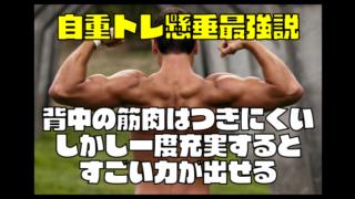 自重トレ懸垂最強「背中の筋肉はつきにくい。しかし一度充実するとすごい力が出せる。」